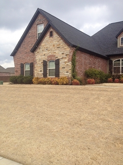 Landscaping - Residential
