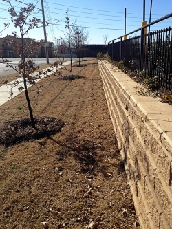 Stone Retaining Wall and Fencing
